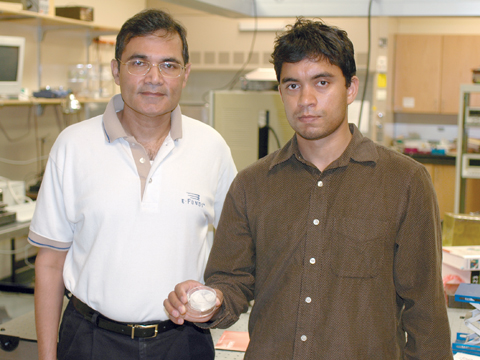 DEVICE DEVELOPERS - Ravi Saraf (left) and doctoral student Vivek Maheshwari display a sample of their high-resolution device. The sensor has...