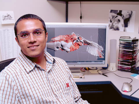 3D Creator � Vishal Singh, a specialist with Communication Information Technology, helped create the 3D bovine video (pictured on the screen...